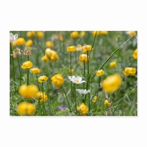 Alpage en fleurs - Poster 60 x 40 cm