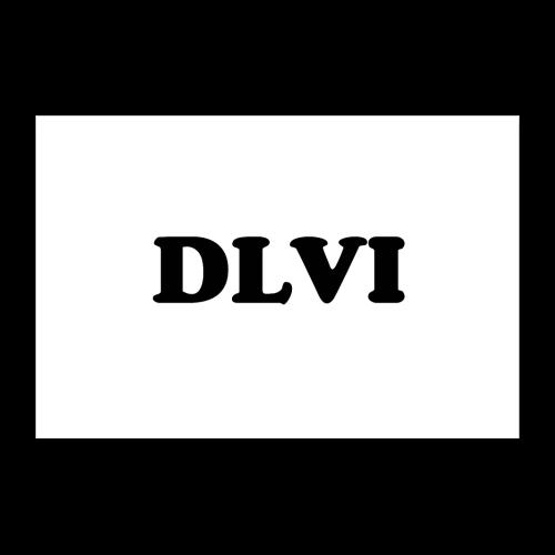DLVI poster - Poster 24 x 16 (60x40 cm)