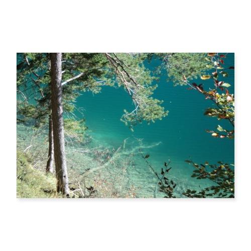 Alpsee, Königlicher Natursee - Poster 60x40 cm