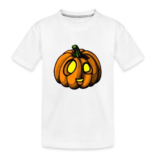Pumpkin Halloween scribblesirii - Teinien premium luomu-t-paita