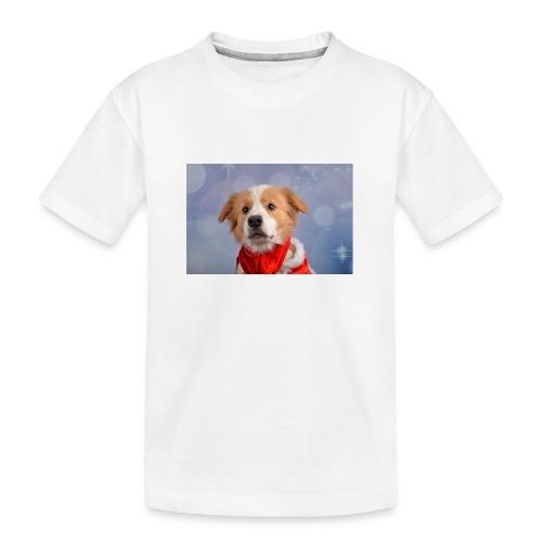 DSC_2040-jpg - Teenager premium biologisch T-shirt