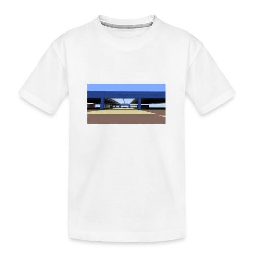2017 04 05 19 06 09 - T-shirt bio Premium Ado
