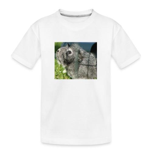 Pummel - Teenager Premium Bio T-Shirt