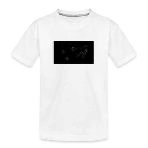 FessorVidenskabsTrøjen - Teenager premium T-shirt økologisk