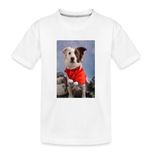 DSC_2058-jpg - Teenager premium biologisch T-shirt