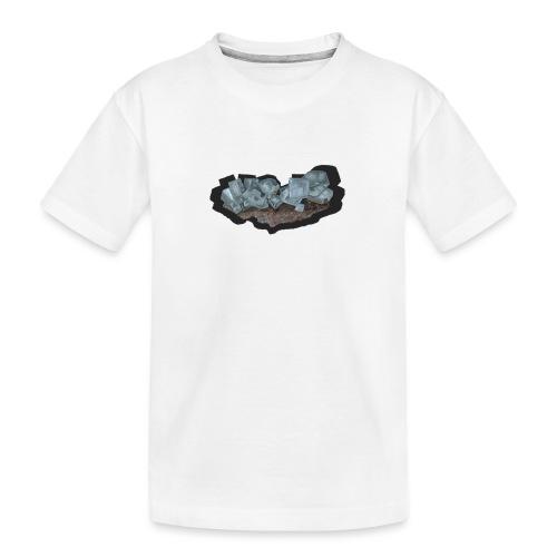 Halit-Kristallstufe - Teenager Premium Bio T-Shirt