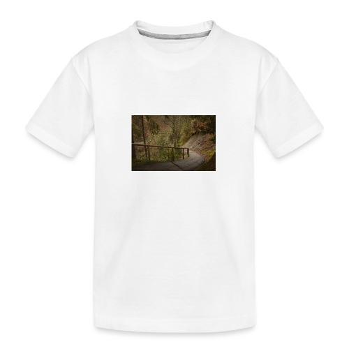 1.11.17 - Teenager Premium Bio T-Shirt