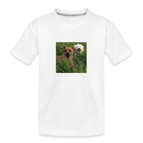 15965945 10154023153891879 8302290575382704701 n - Teenager premium biologisch T-shirt