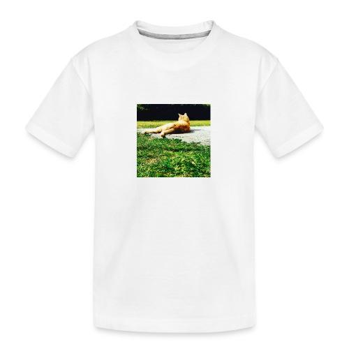 DCF91892 59C9 43B0 9600 907255572290 - Teenager Premium Bio T-Shirt