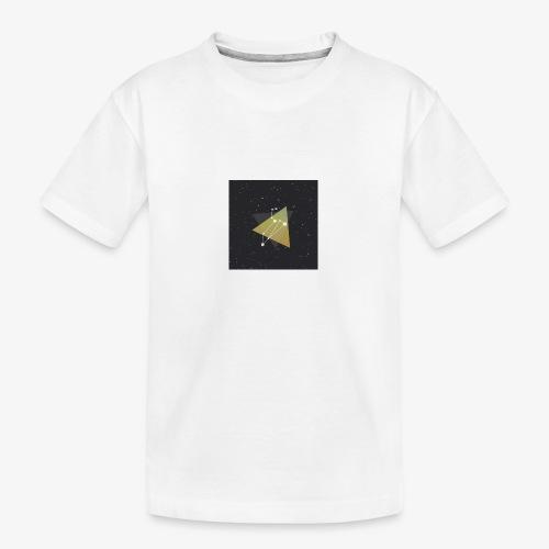 4541675080397111067 - Teenager Premium Organic T-Shirt