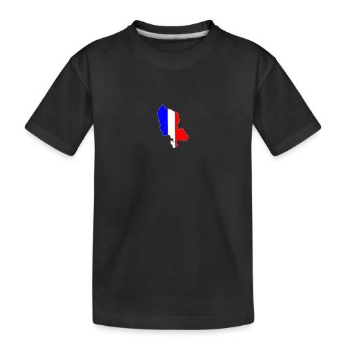 Carte Territoire de Belfort bleu blanc rouge - T-shirt bio Premium Ado