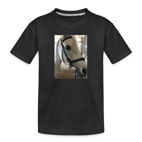 9AF36D46 95C1 4E6C 8DAC 5943A5A0879D - Premium økologisk T-skjorte for tenåringer