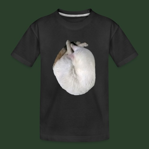 catheart R1 - Teenager Premium Bio T-Shirt