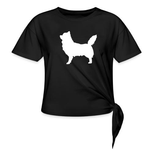 Chihuahua pitkakarva valkoinen - Solmupaita
