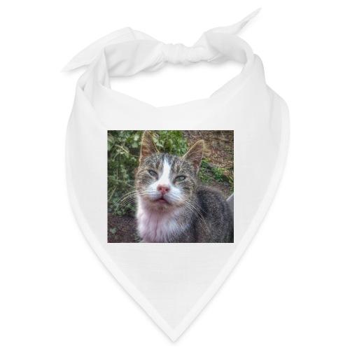 Katze Max - Bandana