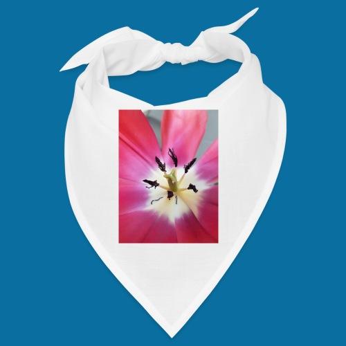 Tulipe Darwin - Bandana