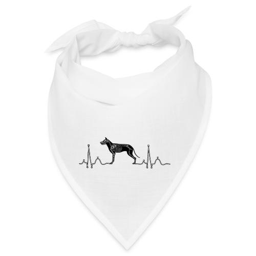 ECG met hond - Bandana