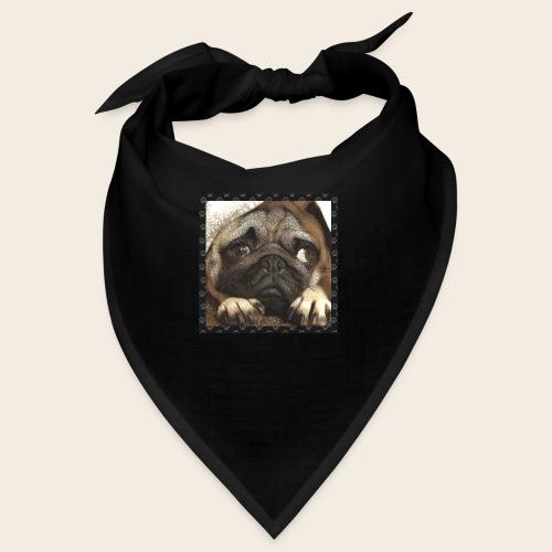 Mops Hund 1 - Bandana
