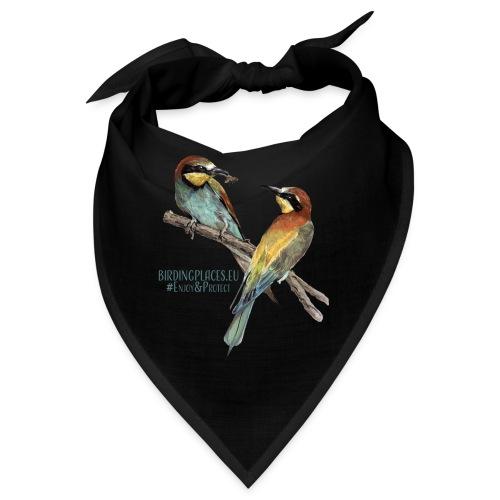 Bee-eaters Birdingplaces - Bandana