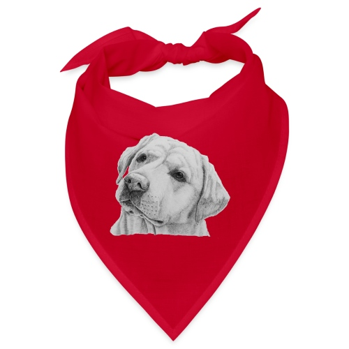 labrador retriever yellow - head - Bandana