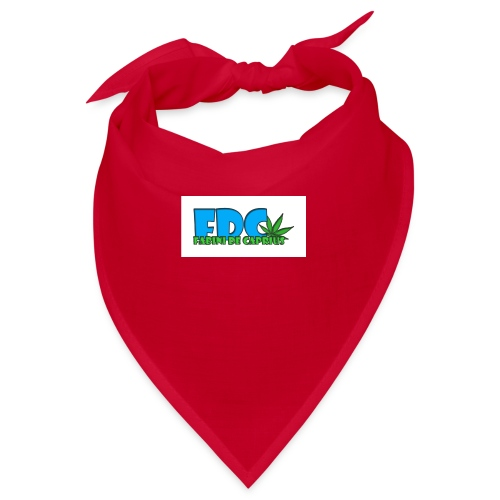 Logo_Fabini_camisetas-jpg - Bandana