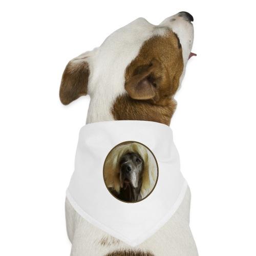 D O G G E mit Perücke - Hunde-Bandana