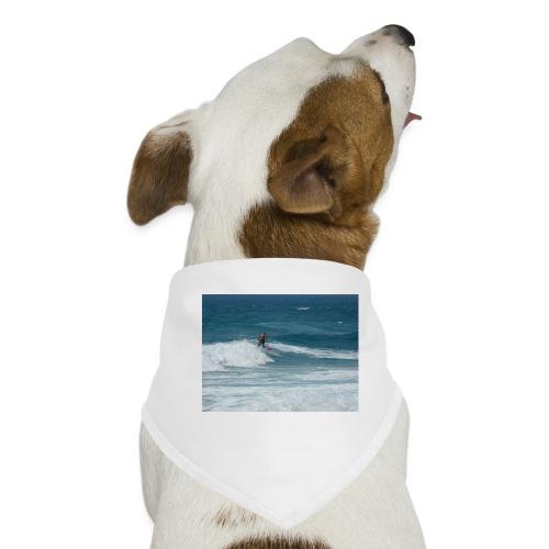 cyprus 2008 118 - Dog Bandana