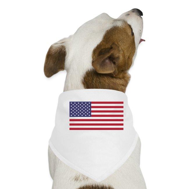 "Hoodie ""USA"""