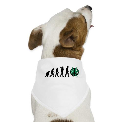 Evolution Cannabis - Hunde-Bandana