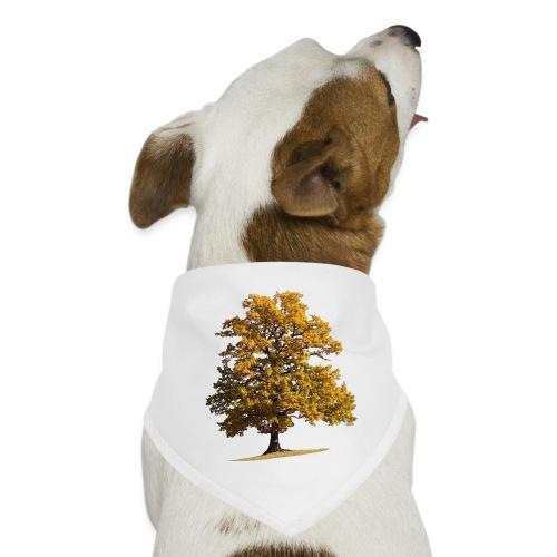 Herbst Herbstlaub Herbstbaum autumn - Hunde-Bandana