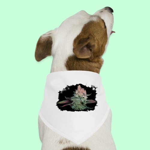 Pflänzchen png - Hunde-Bandana