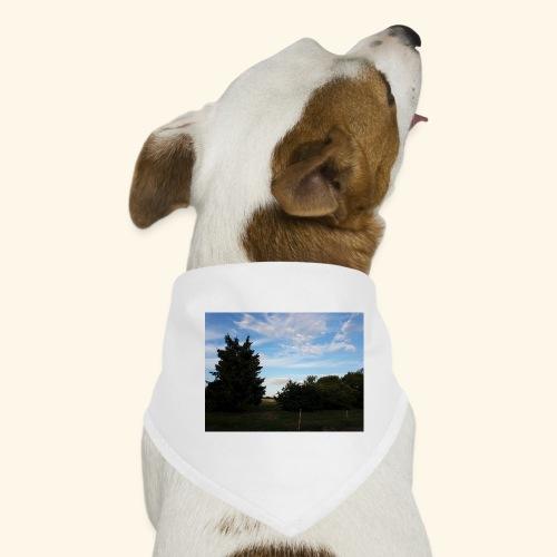 Feld mit schönem Sommerhimmel - Hunde-Bandana