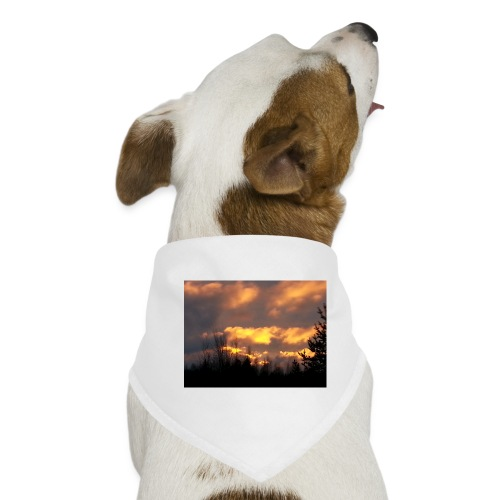 Iltarusko - Koiran bandana