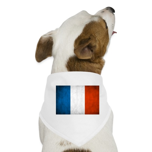 FRANCE - Bandana pour chien