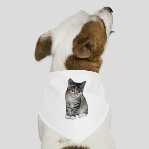 pic 2706 040313 - Honden-bandana