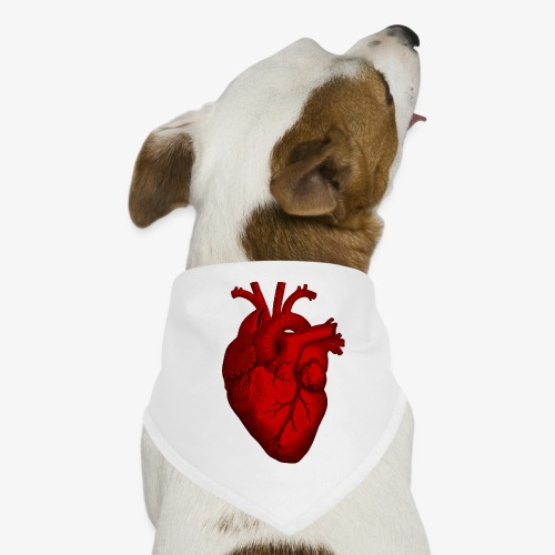 Heart - Dog Bandana