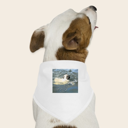 Mops schwimmt - Hunde-Bandana