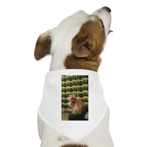 Nikke20 Okra Fani - Koiran bandana