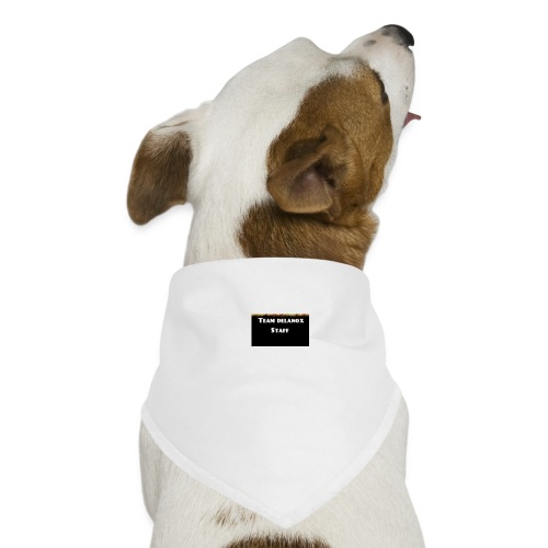 T-shirt staff Delanox - Bandana pour chien