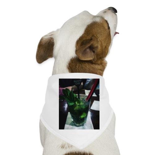 Mojitox - Hunde-Bandana