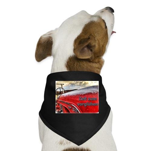 Zeit zum vorglühen - Hunde-Bandana