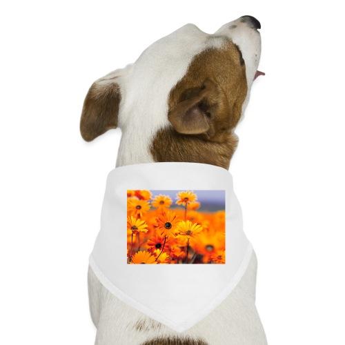 Flower Power - Dog Bandana