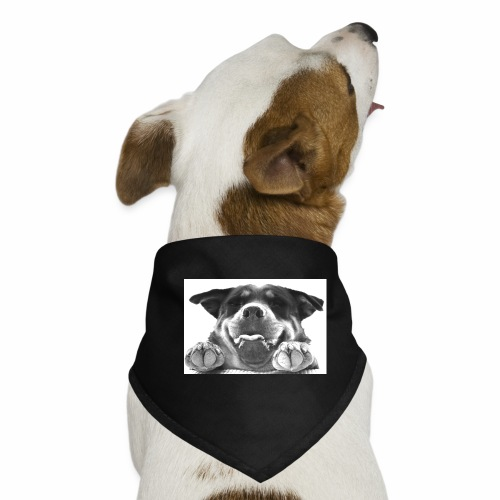 Aisha - Pañuelo bandana para perro