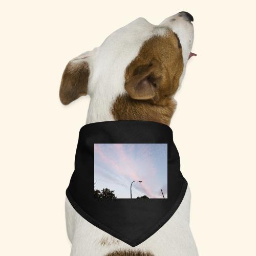 Abendhimmel - Hunde-Bandana