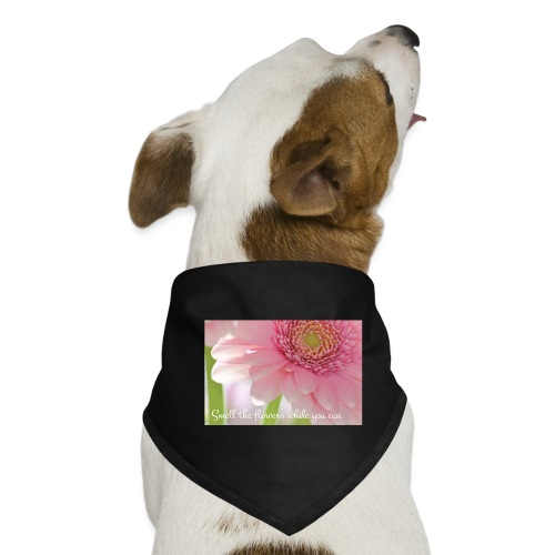 Smell the flowers while you can - Koiran bandana