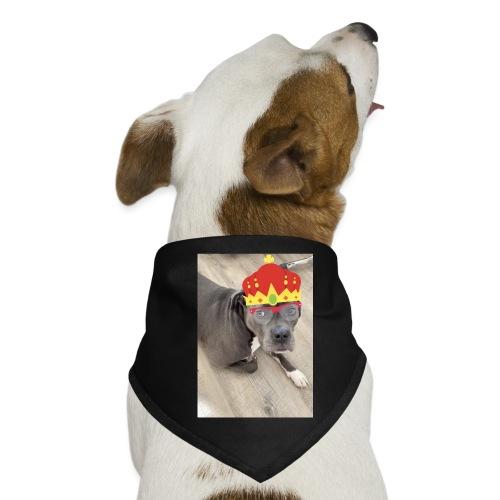 King-Nelly - Hunde-Bandana