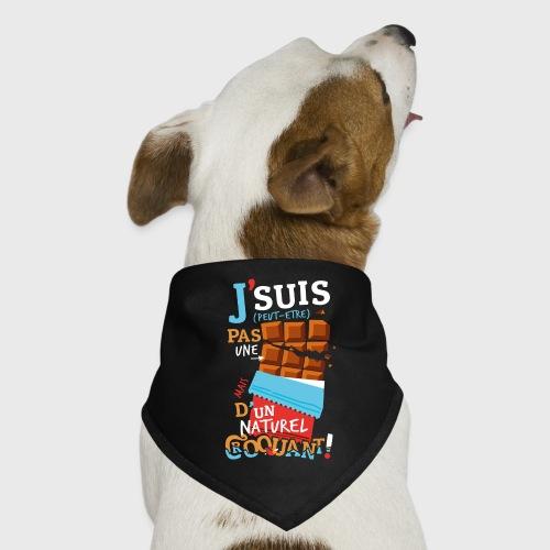 Tablettes de Chocolat - Bandana pour chien