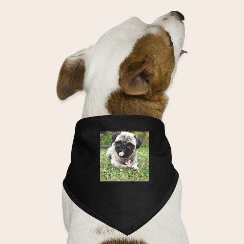 Mops Wiese - Hunde-Bandana