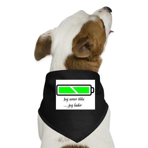 lader_2 - Hunde-bandana