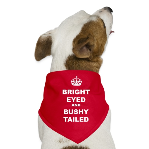 BRIGHT EYED AND BUSHY TAILED - Dog Bandana